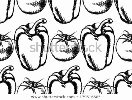 450x340 tomato sketch awesome tomato plant drawing