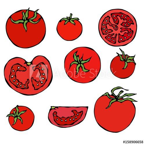 500x500 set of fresh red tomatoes half of tomato, slice of tomato, cherry