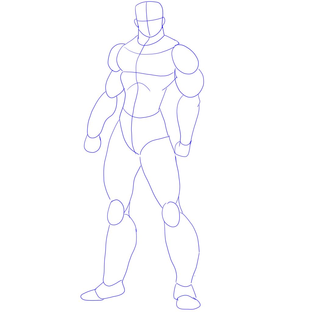 Torso Anatomy Drawing | Free download best Torso Anatomy