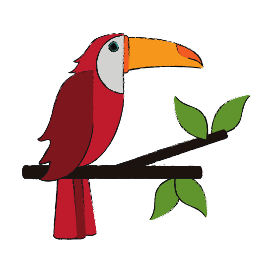 550x550 Brazil Drawing Toucans Transparent Png Clipart Free Download