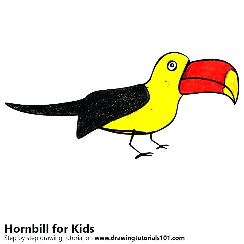 800x800 How To Draw A Toucan For Kids Toucan Bird Cool Print Cute Childish