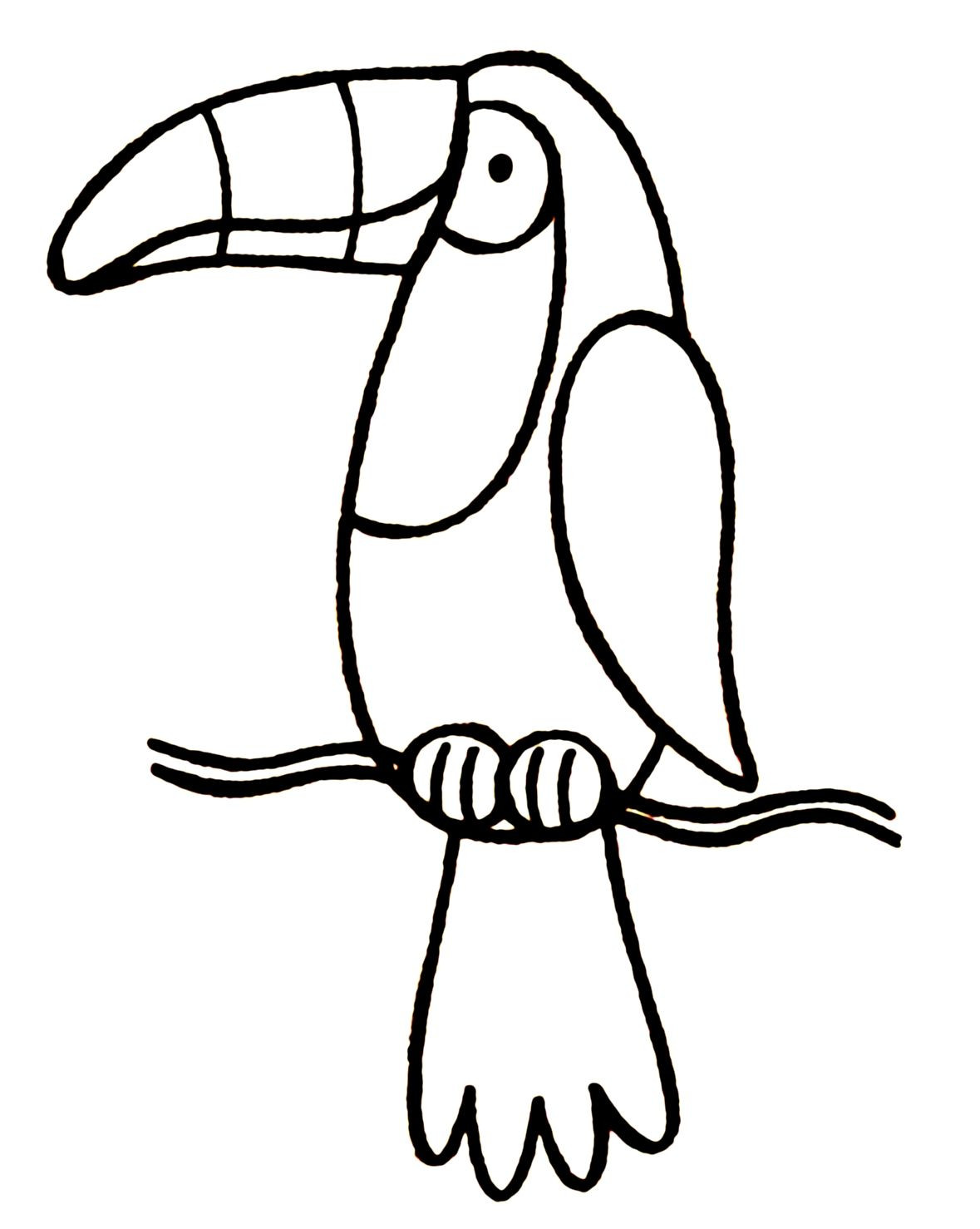 1179x1478 On Toucan Coloring Page