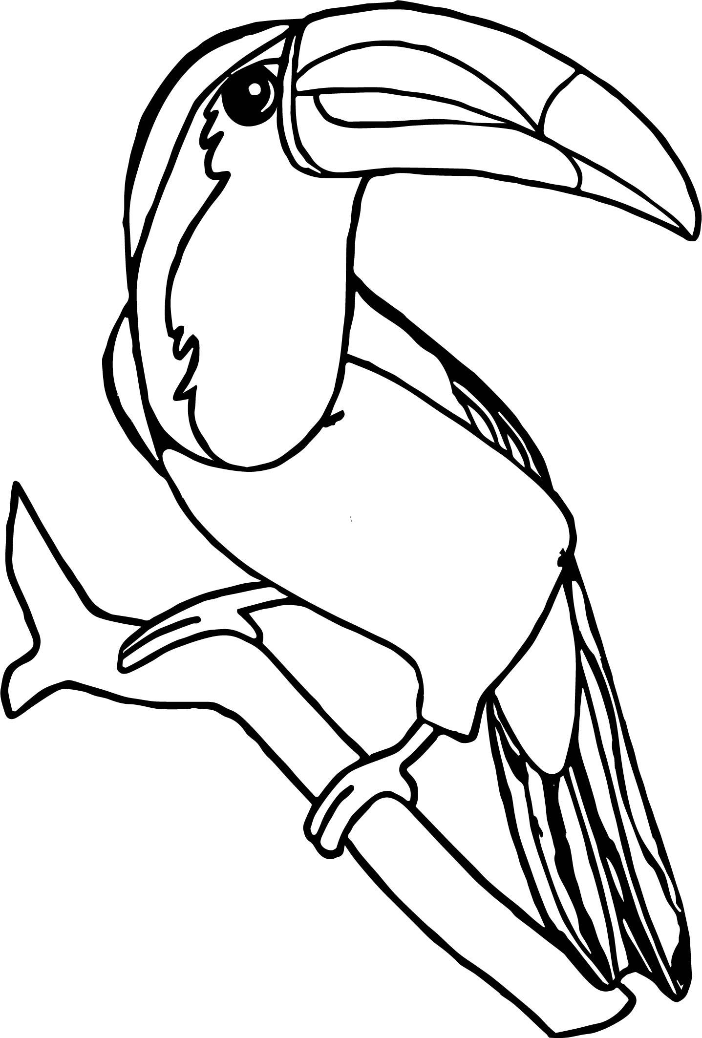 1437x2125 Toucan Color Coloring