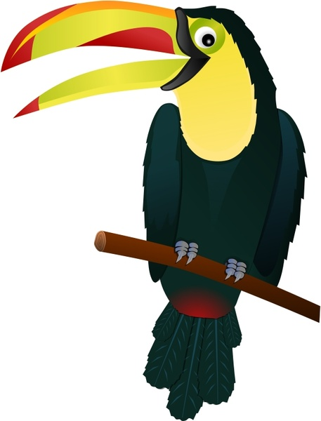 457x600 Toucan Free Vector In Open Office Drawing