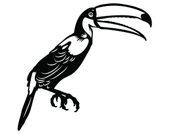 340x270 Toucan Bird Etsy