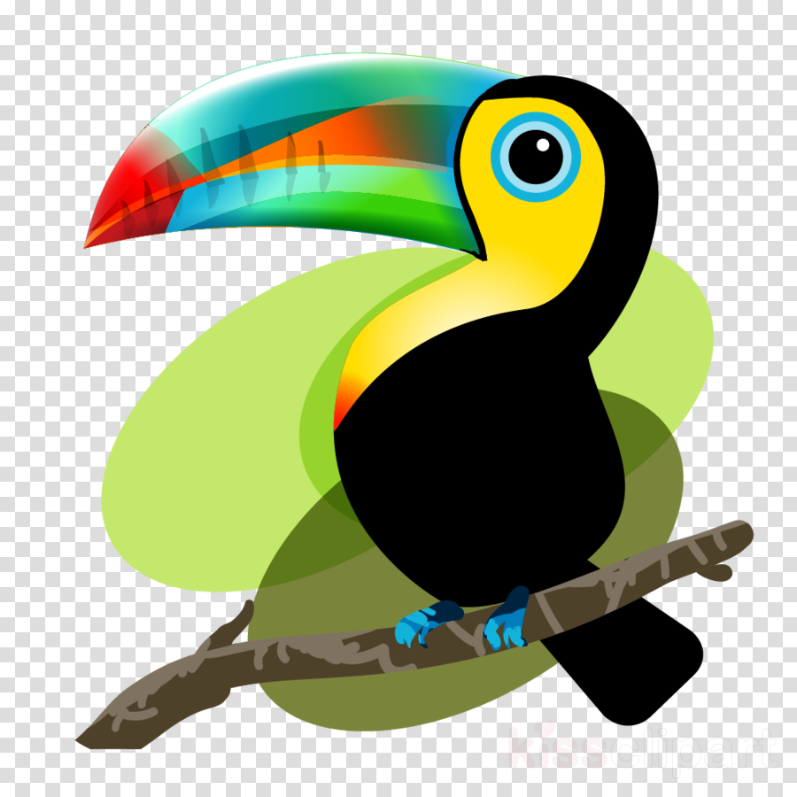 900x900 Bird, Drawing, Graphics, Transparent Png Image Clipart Free Download