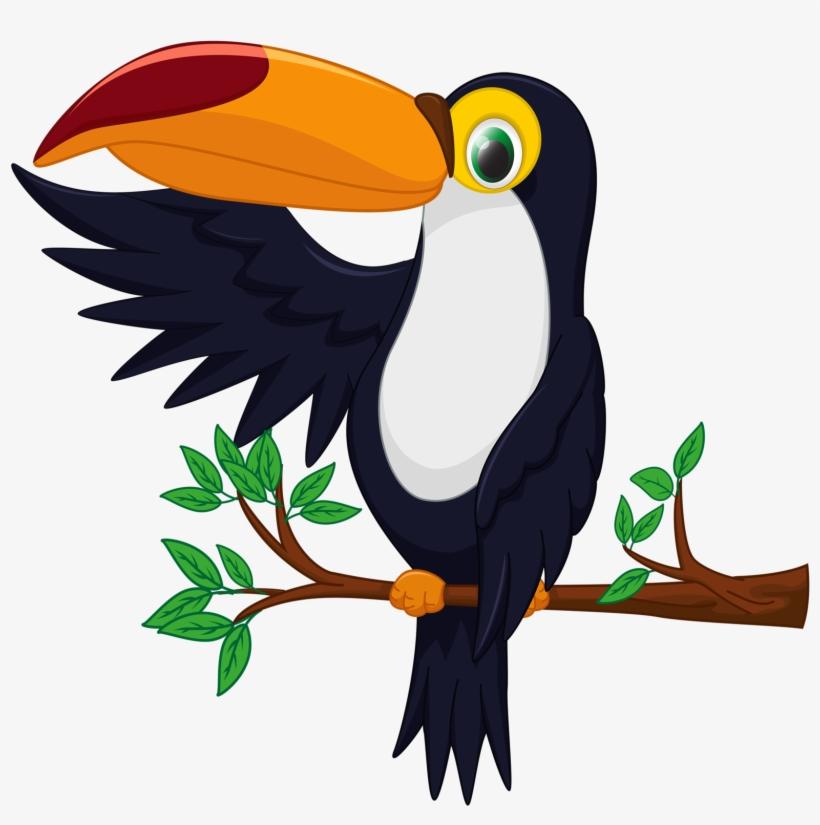820x825 Bird Toucan Drawing