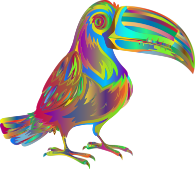 391x340 bird white throated toucan drawing line art cc0