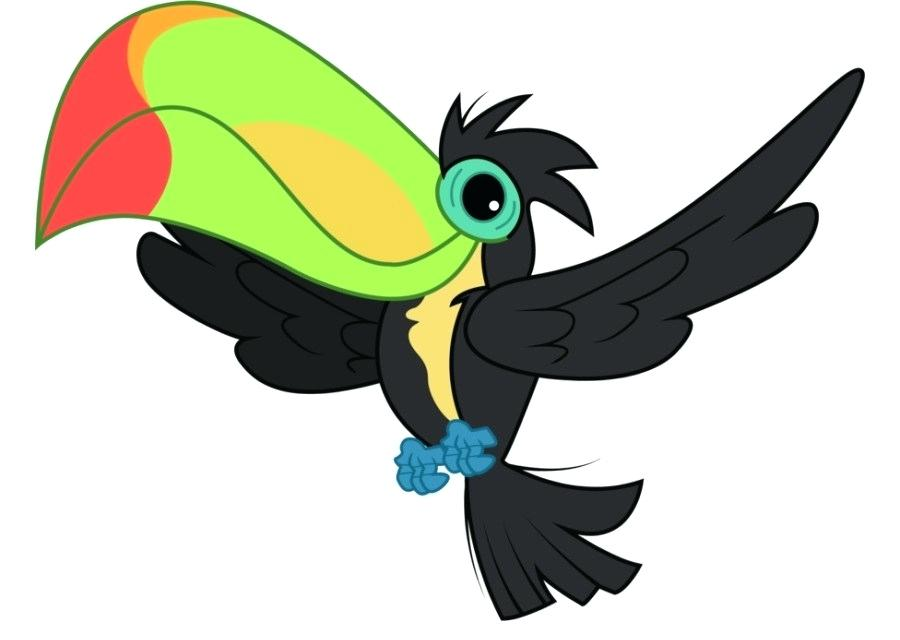 Toucan Drawing Step By Step