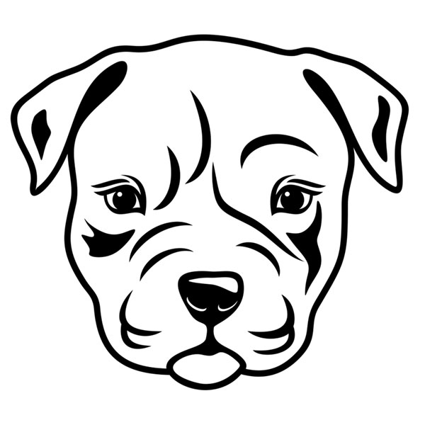 600x600 Tooth Drawing Pitbull For Free Download