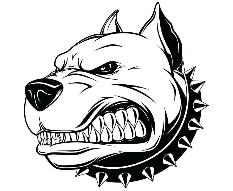 794x650 Pitbull Cartoon Drawing Tough Guard Dog Bulldog With Spike Collar