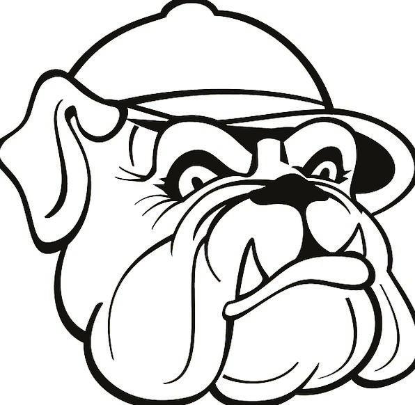 596x582 Bulldog Drawing
