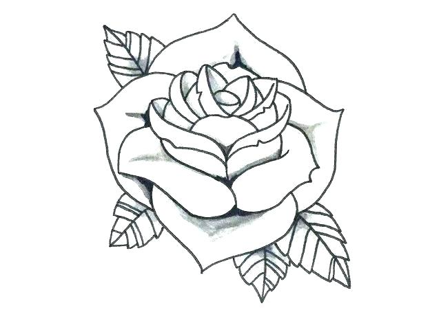 3f70d72f9 Traditional Rose Drawing | Free download best Traditional Rose ...