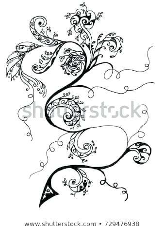 338x470 Draw Vines Best Rose Tattoo Stencil Ideas Traditional Draw Grape