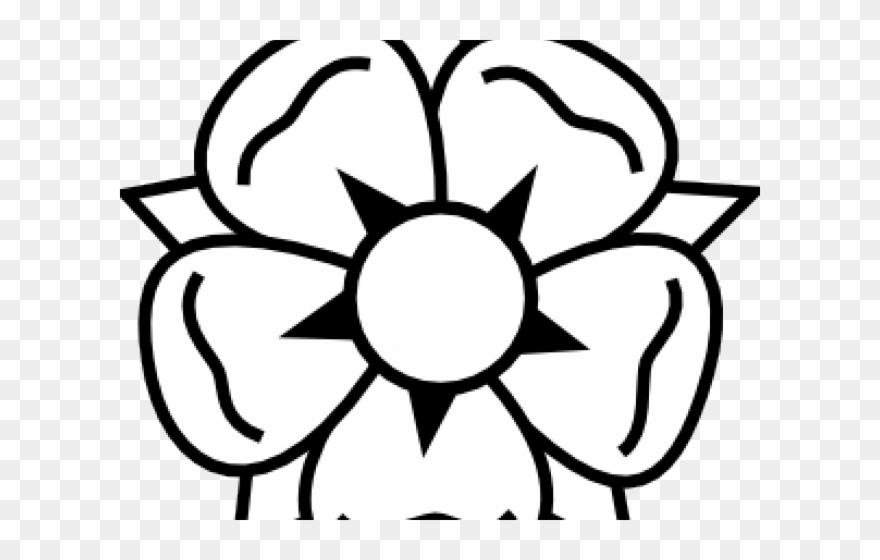 880x560 White Flower Clipart Little Flower