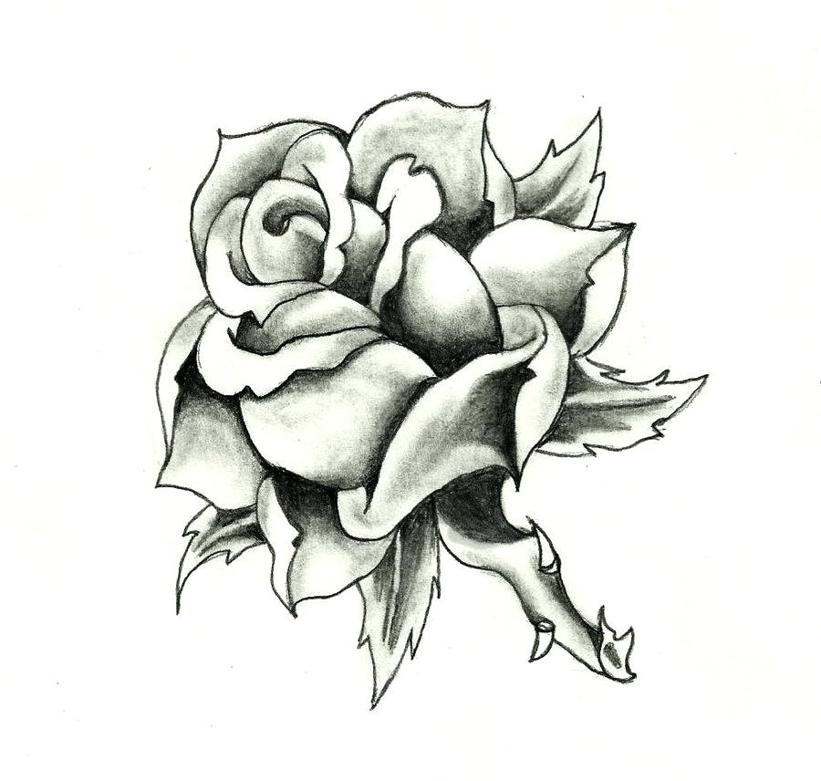 900x856 Traditional Rose Design