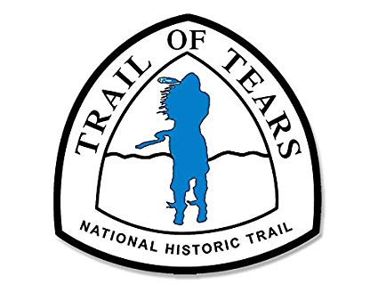 425x319 american vinyl trail of tears national national