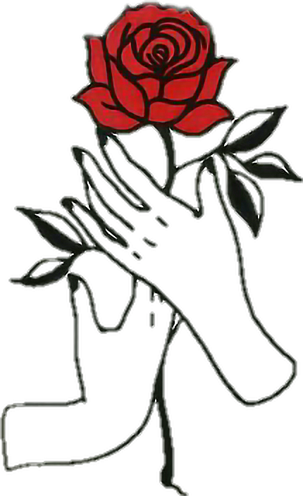 430x704 Rose Hands Aesthetic Tumblr Draw