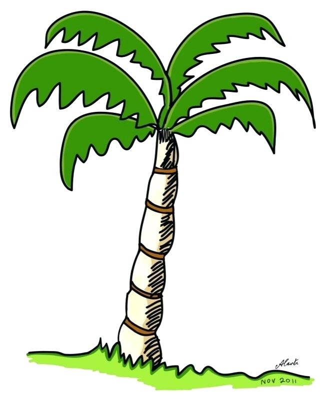 646x799 palm tree drawings how to draw a palm tree palm tree drawings