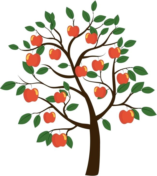 650x728 apple tree branch drawing vector apple tree vector diagram green