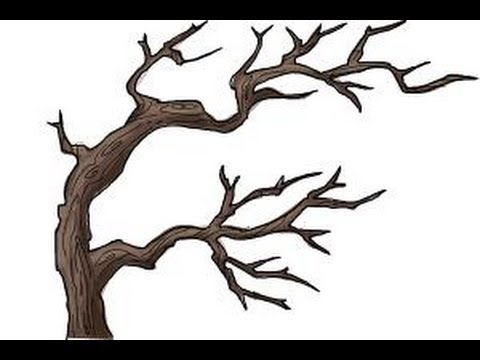 480x360 great tree branch drawing art branch drawing, drawings, art