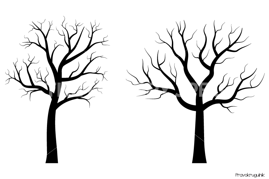 870x579 modern black and white tree haok home modern birch wallpaper non