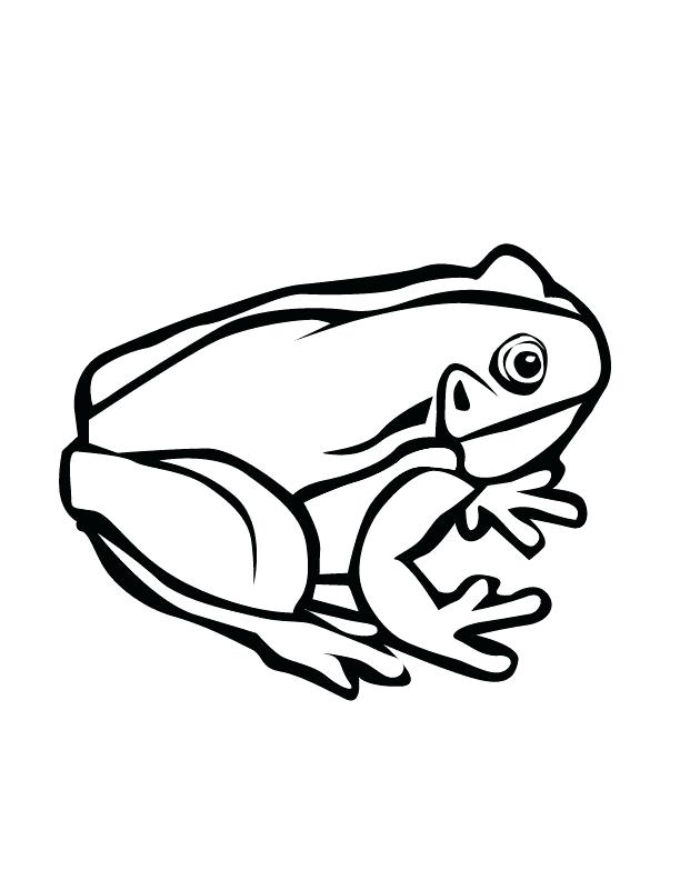 612x792 frog line tree frog line art clip art frog frog lined writing