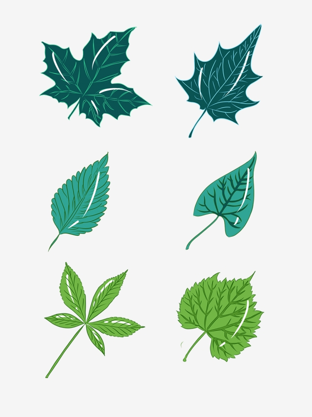 Tree Leaves Drawing | Free download on ClipArtMag