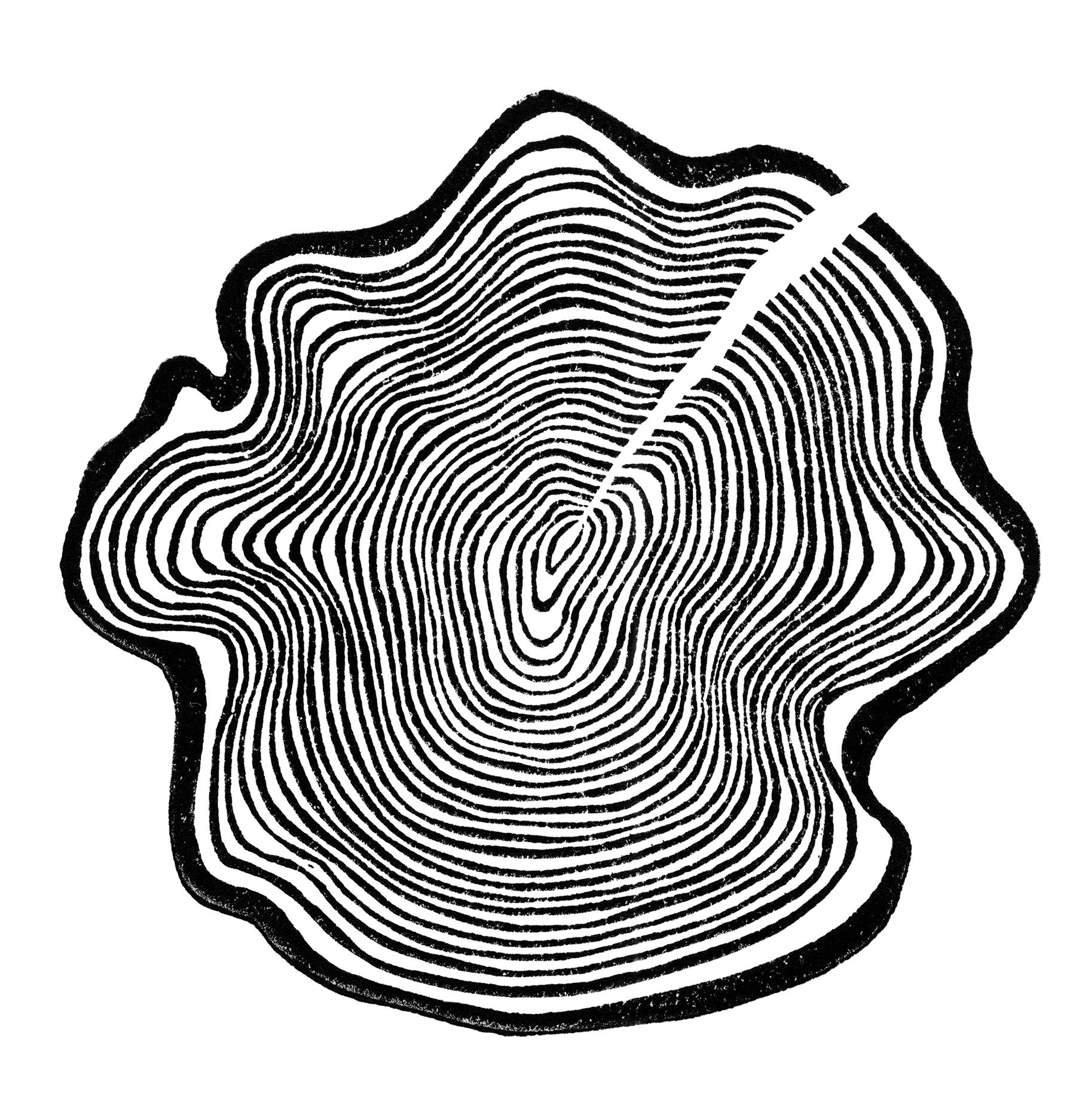 1800x1873 natural twist branding natural twist graphic design, llc
