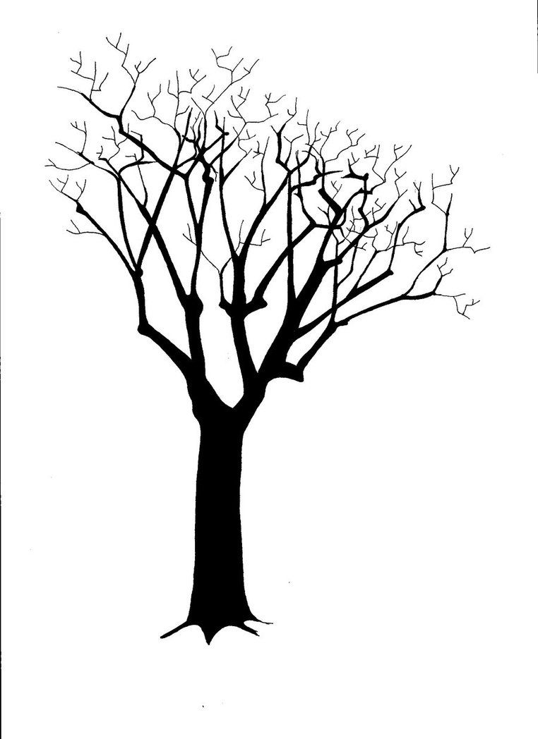 762x1048 images for gt silhouette tree trunk silhouette art tree