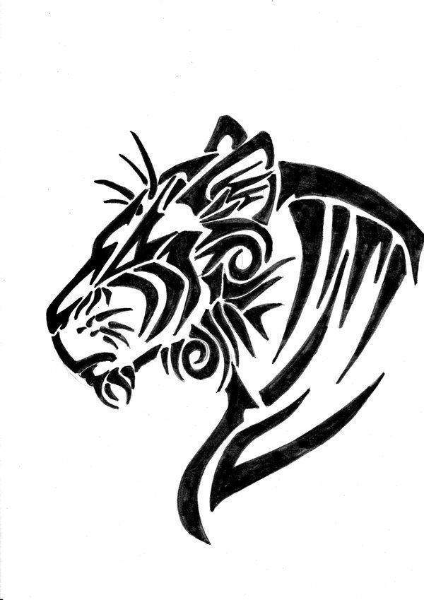 Tribal Tiger Drawing