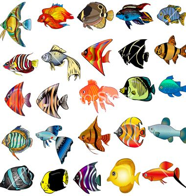 380x400 tropical fish set vector mosaics fish drawings, tropical fish