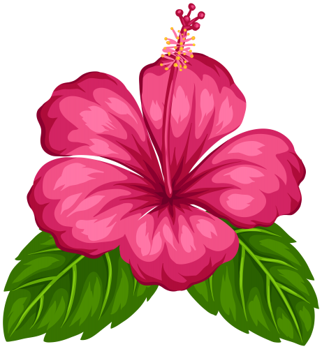 Tropical Island Drawing