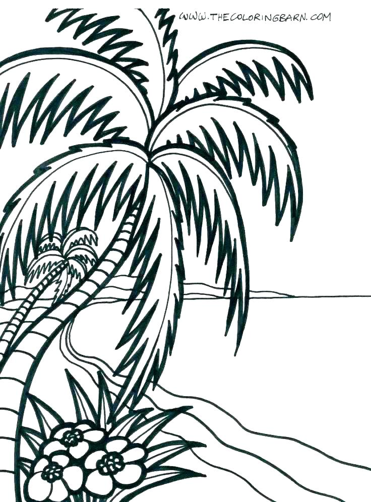 736x996 tropical coloring pages island coloring pages tropical island