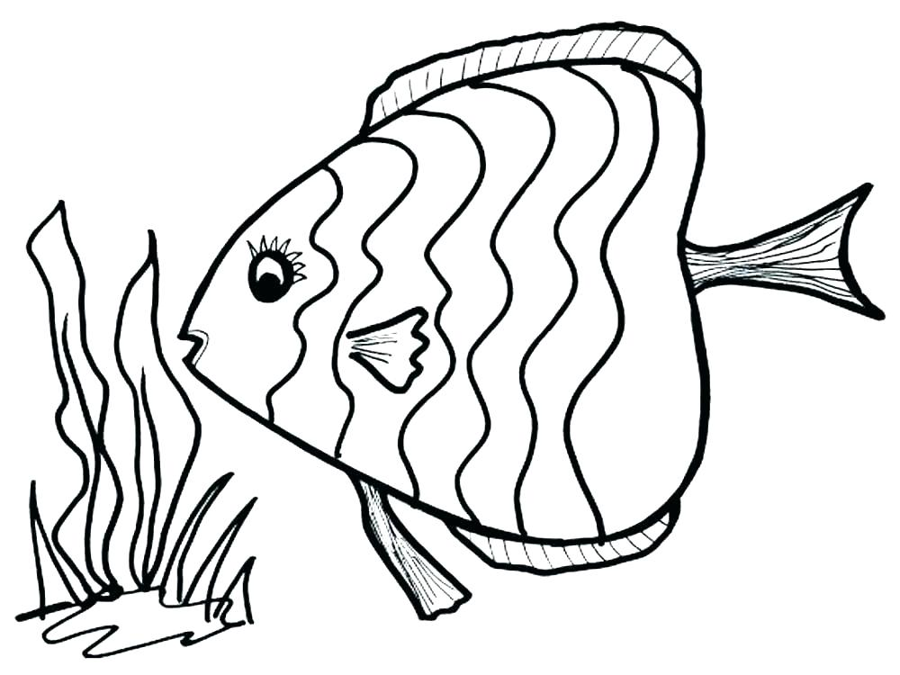 1000x750 tropical coloring pages tropical fish coloring pages free