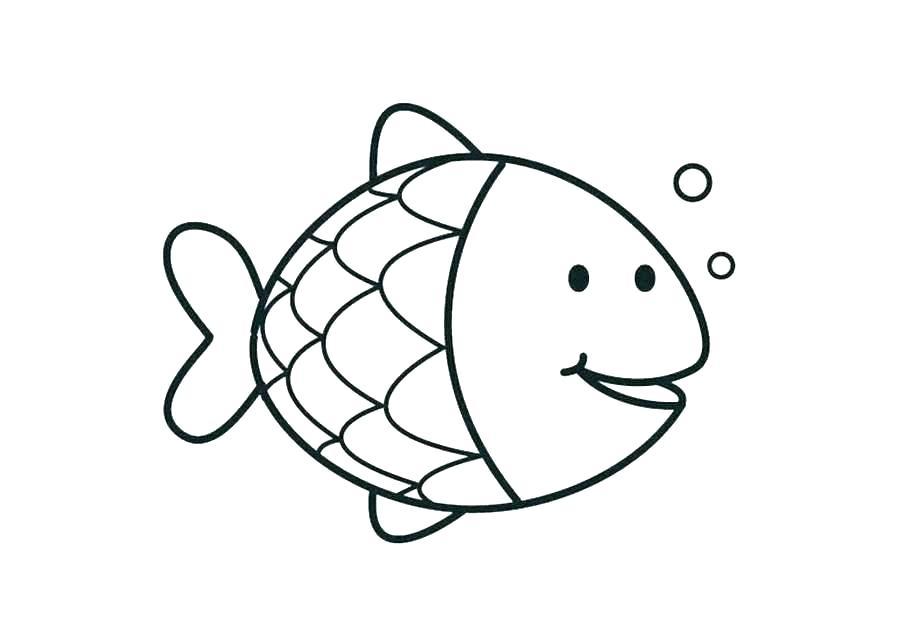 900x637 fish outline unique fish outline drawing luxury fish outline fish