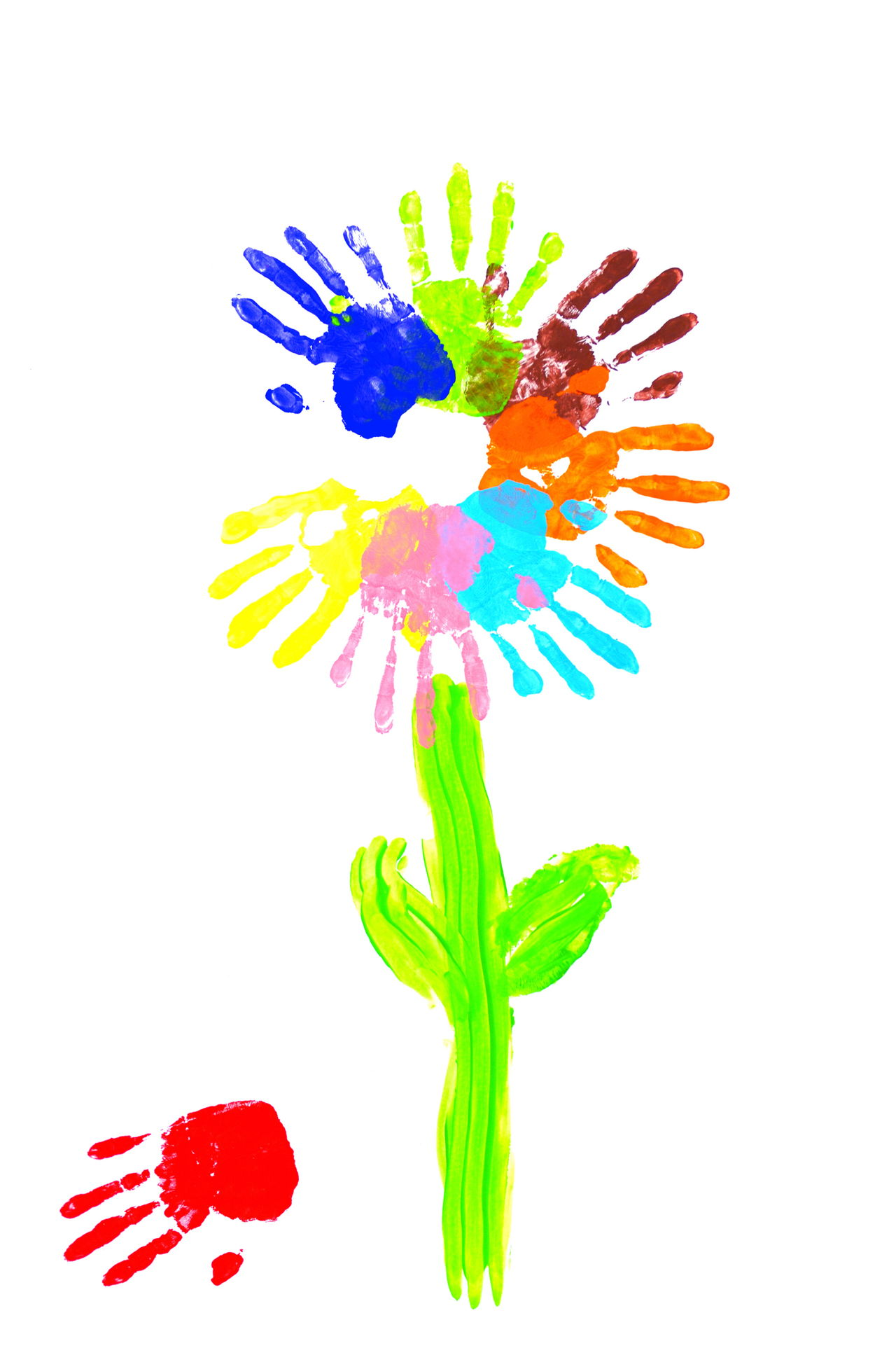 1280x1925 Learn How To Draw Flowers With These Step