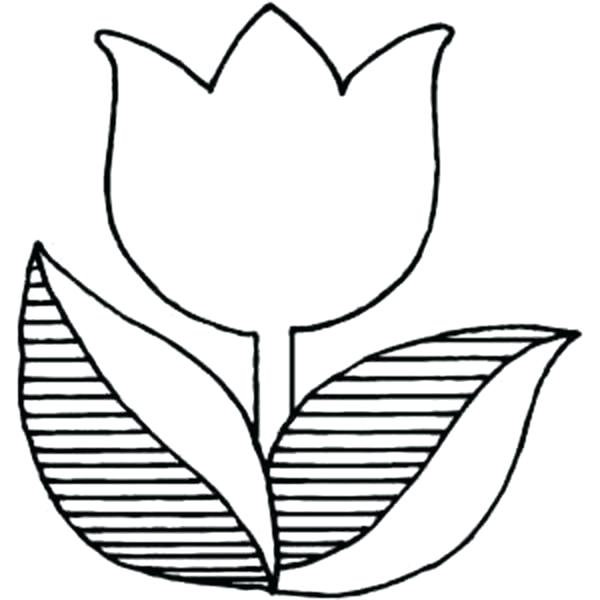 600x600 tulips coloring pages drawing tulip coloring pages tulips flower