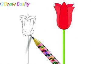 300x210 tulip flowers drawings tulip flowers drawings tulip flower outline