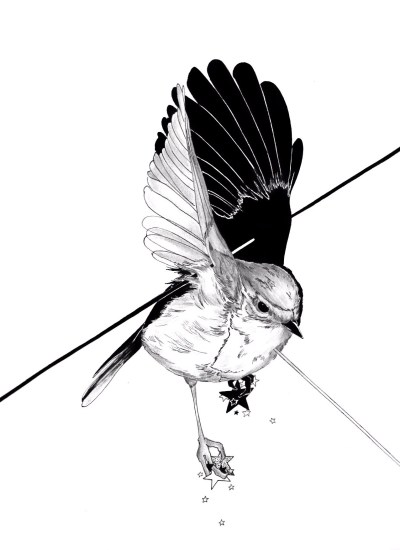 400x550 Huge Collection Of 'bird Drawing Tumblr' Download More Than