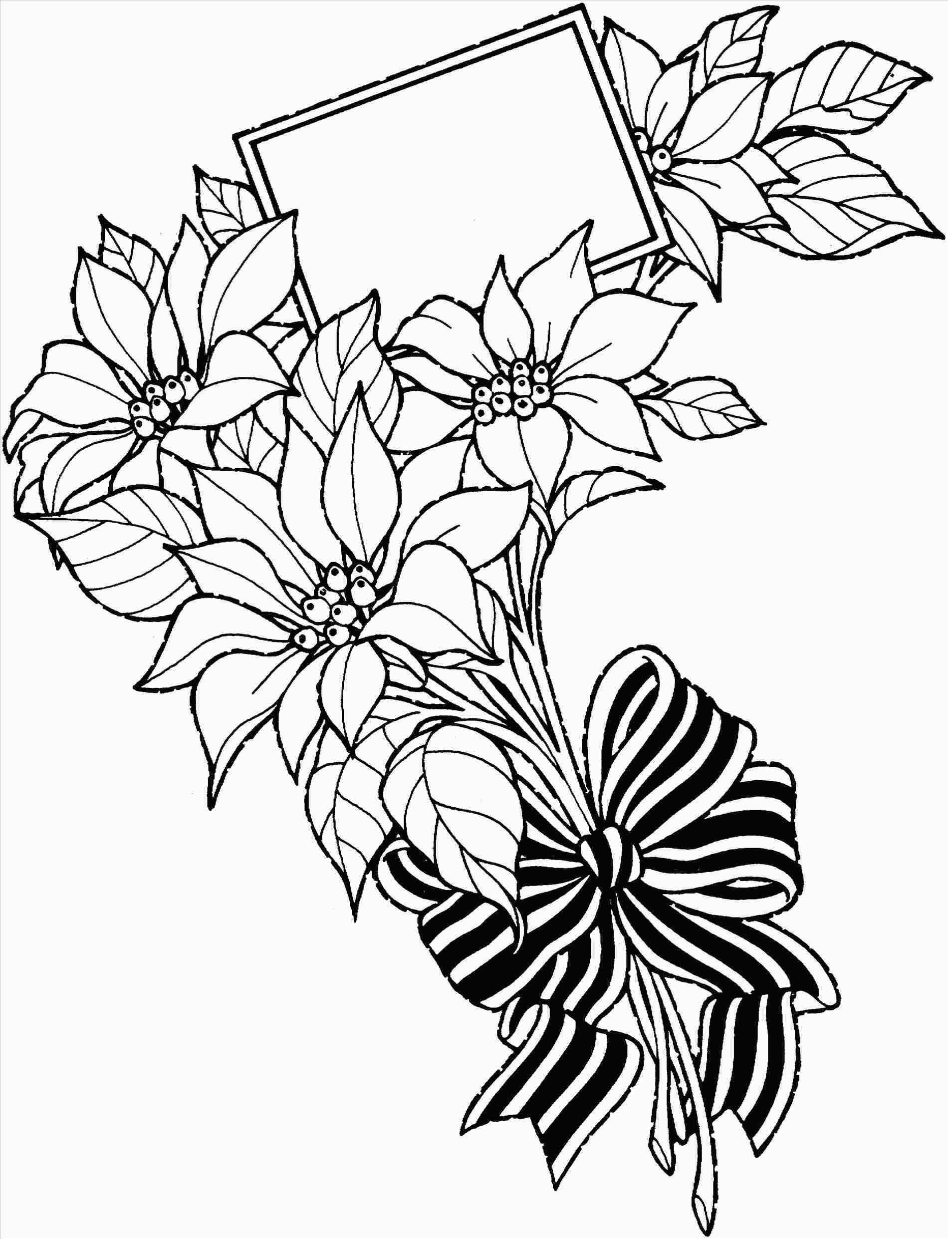 1900x2482 Rose Drawing Tumblr Easy