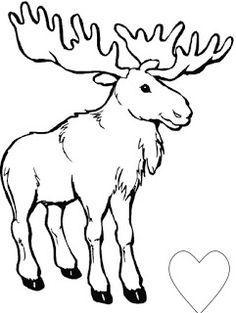 Tundra Animals Drawings