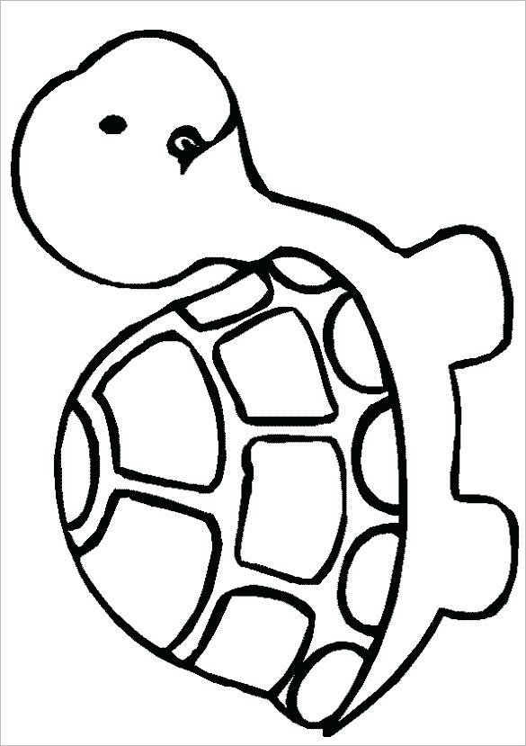 Turtle Line Drawing Free Download Best Turtle Line Drawing On