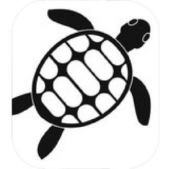 336x336 Simple Turtle Line Drawing Ninja Step