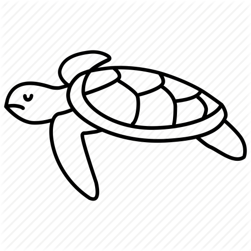 512x512 Turtle, Drawing, Sea, Transparent Png Image Clipart Free Download