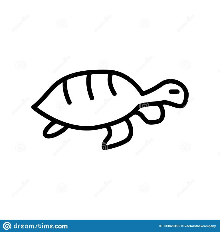 728x768 Turtle Drawing Contest Art Simple Outline Hawaiian A To Make It