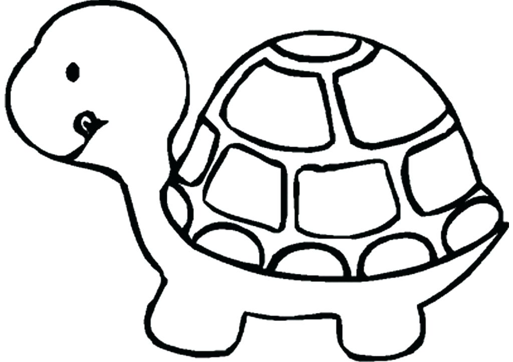 1024x723 Turtle Drawing Basic For Free Download