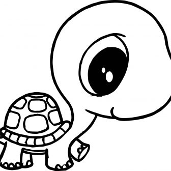 336x336 Turtle Drawing Tags Crocodile Drawing Cross Color Pages Coloring