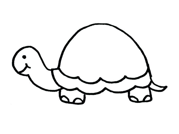 736x552 Turtle Outline Thumbnail Of Turtle Example Turtle Outline Images