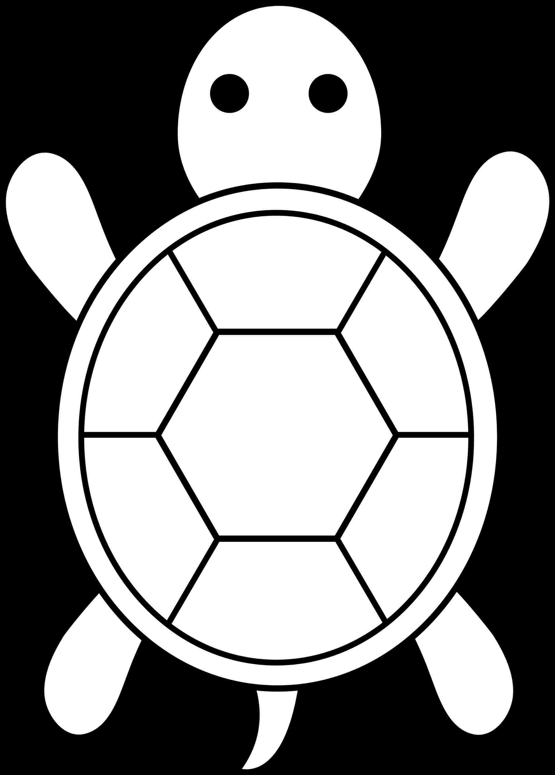 1899x2651 Outline Drawings Cartoon Turtles For Applique Pattern